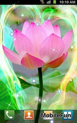 Lotus by Venkateshwara apps (Лотос)